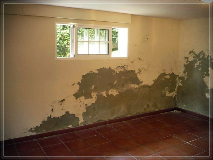 How to remove saltpeter from walls 👷♂👷♀
