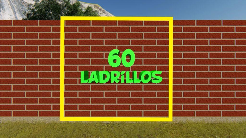 how many bricks enter per square meter