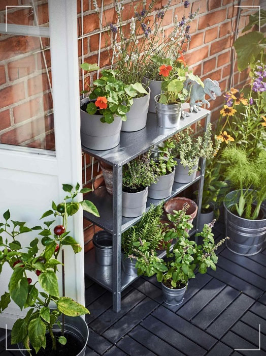 Ideas to decorate the garden